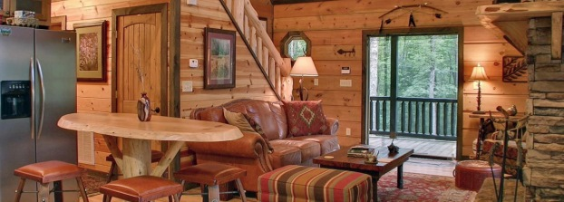 Blue Ridge Cabin Management Header.jpg